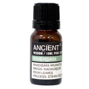 10 ml Ravensara Essential Oil Essential Oils