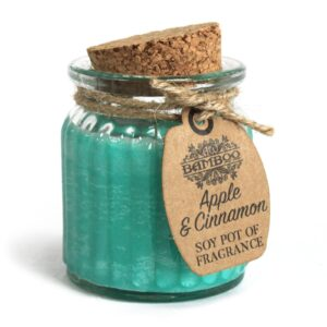 Apple and Cinnamon Soy Pot of Fragrance Candles Soy Pot of Fragrance Candle