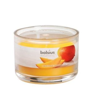 Aromatic Scented Candle Jars Exotic Mango Aromatic Jar Candles