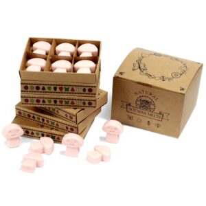 Box of 6  Wax Melts Old Ginger Natural Soy Wax Melts