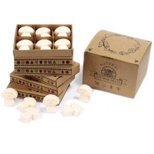 Box of 6 Wax Melts Vanilla Nutmeg Natural Soy Wax Melts