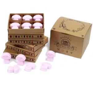 Box of 6  Wax Melts Ylang Natural Soy Wax Melts