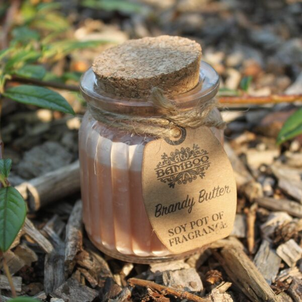 Brandy Butter Soy Pot of Fragrance Candles Candles