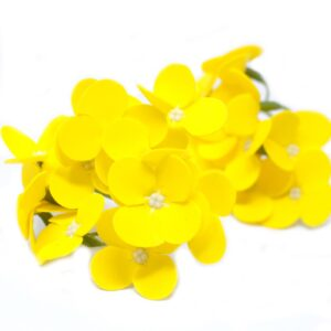 Craft Soap Flowers Hyacinth Bean Yellow Craft Soap Flowers