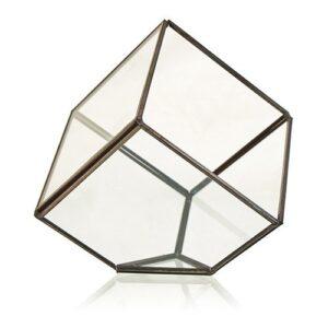 Glass Terrarium Cube on Corner Glass Terrariums
