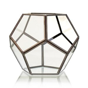 Glass Terrarium Large Octagon Glass Terrariums
