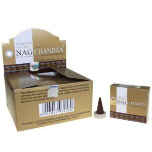 Golden Chandan Cone Golden Nagchampa