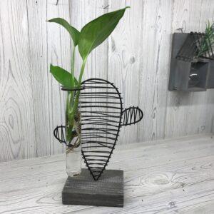 Hydroponic Home Decor Cactus and Lab Pot Hydroponic Home Décor Pots