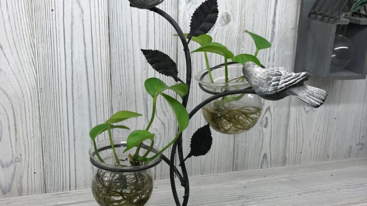 Hydroponic Home Decor Two Pots and Birds Hydroponic Home Décor Pots