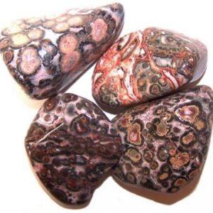 L Tumble Stones Leopard Skin Large Tumble Stones