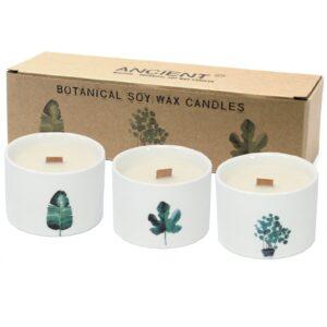 Med Botanical Candles Lemon Honeysuckle Botanical Candles