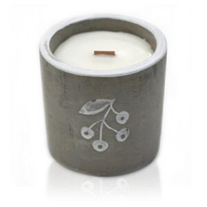 Med Pot Berries Juniper and Sweet Gin Concrete Wooden Wick Candle