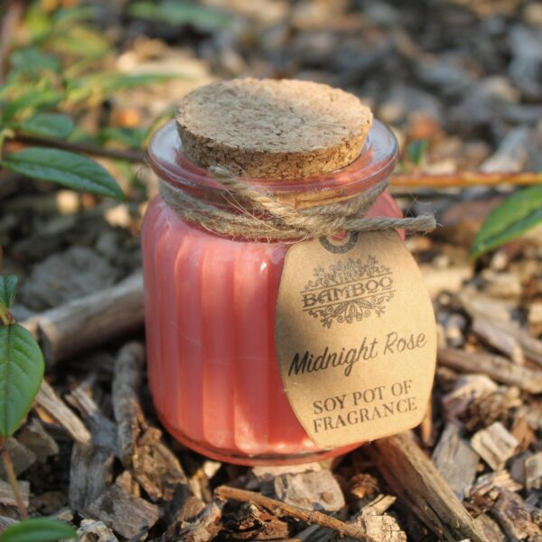 Midnight Rose Soy Pot of Fragrance Candles Candles
