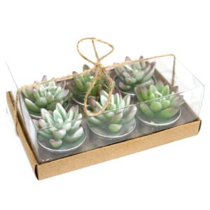 Set of 6 Agave Cactus Tealights in Gift Box Cactus Candles
