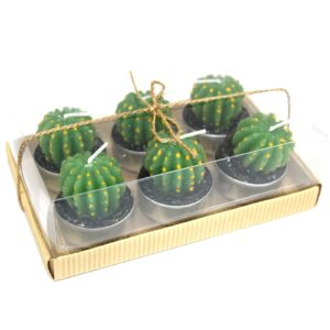 Set of 6 Barrel Cactus Tealights in Gift Box Cactus Candles