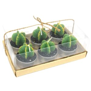 Set of 6 Monks Cactus Tealights in Gift Box Cactus Candles