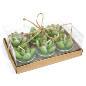 Set of 6 Succulent Cactus Tealights in Gift Box Cactus Candles